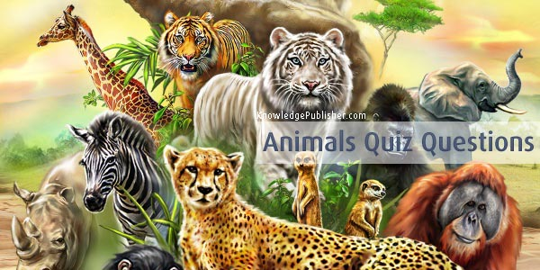 quiz animals animal questions answers multiple choice