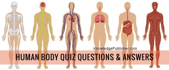 Human Body Quiz Questions