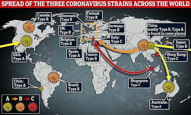 Spread of Coronavirus Strains Across World
